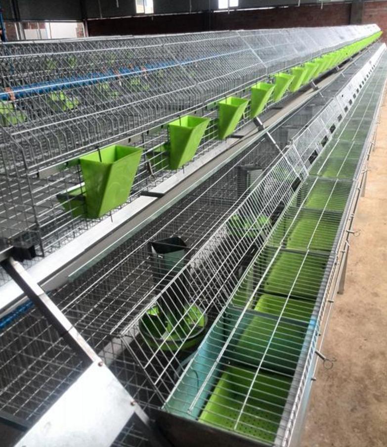 河边石家庄大型兔厂欧式兔笼