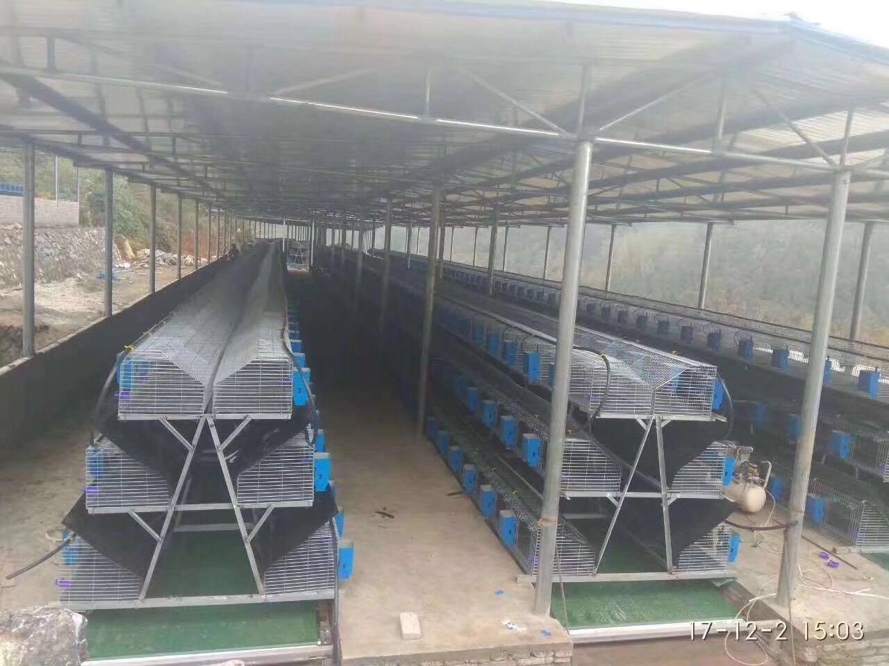 宁夏大型兔厂阶梯式兔笼