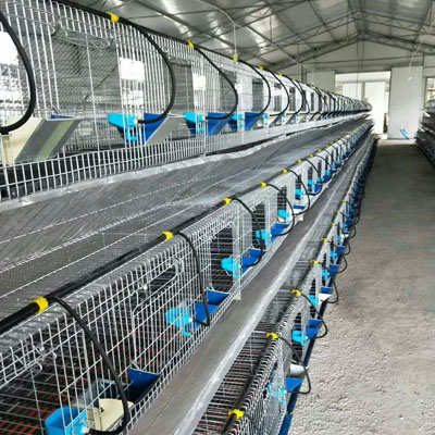 阶梯式兔笼